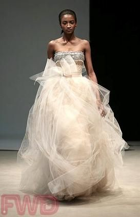 Edgy Vera Wang wedding dress- silver strapless top, full champagne-colored tulle skirt
