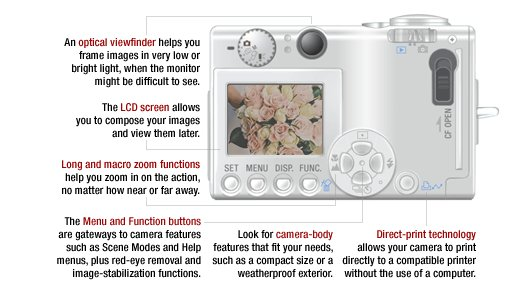 Learning about digital cameras and their functions can help you make the right decision.