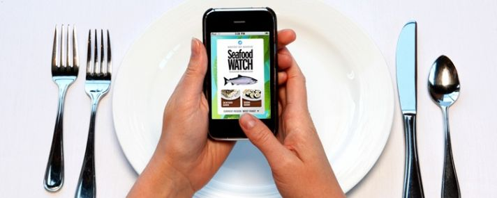 Can an iphone help you with your wedding menu?