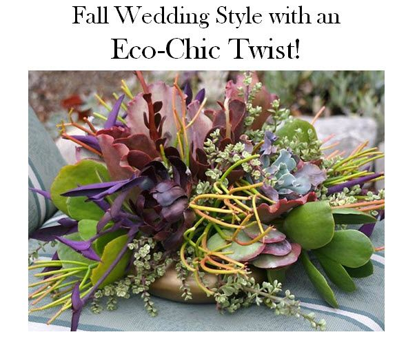 Luxurious eco-friendly succulents are perfect for your fall wedding centerpieces or bouquets