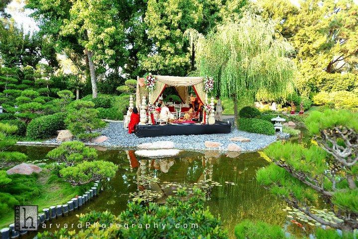 Stunning wedding photo of enchanted garden wedding venue Indian wedding in