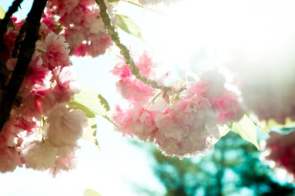 Romantic spring wedding flowers and ceremony arbor for garden wedding