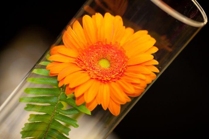 Simple Gerbera daisy wedding centerpiece