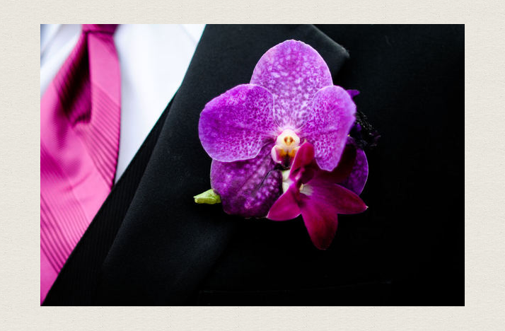 grooms boutonniere magenta wedding color palette orchids