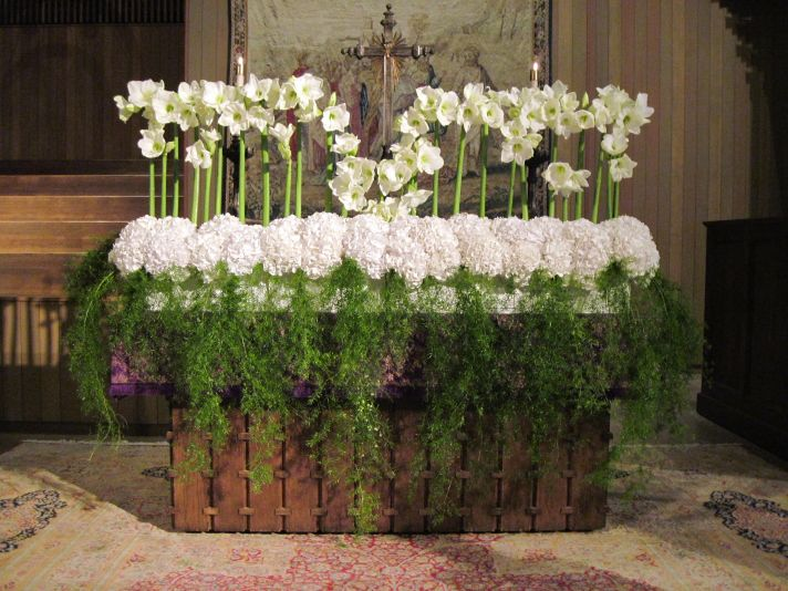 10 white wedding flowers we love amaryllis hydrangeas