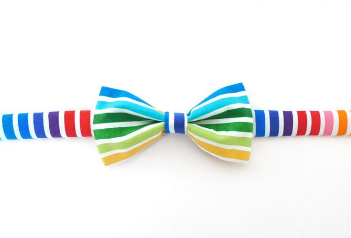 rainbow wedding inspiration bow tie