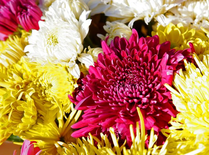 Chrysanthemum wedding flower arrangement