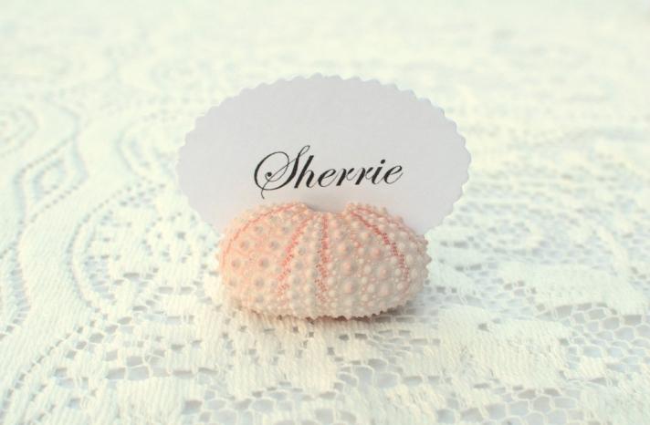 sea urchin escort card holder